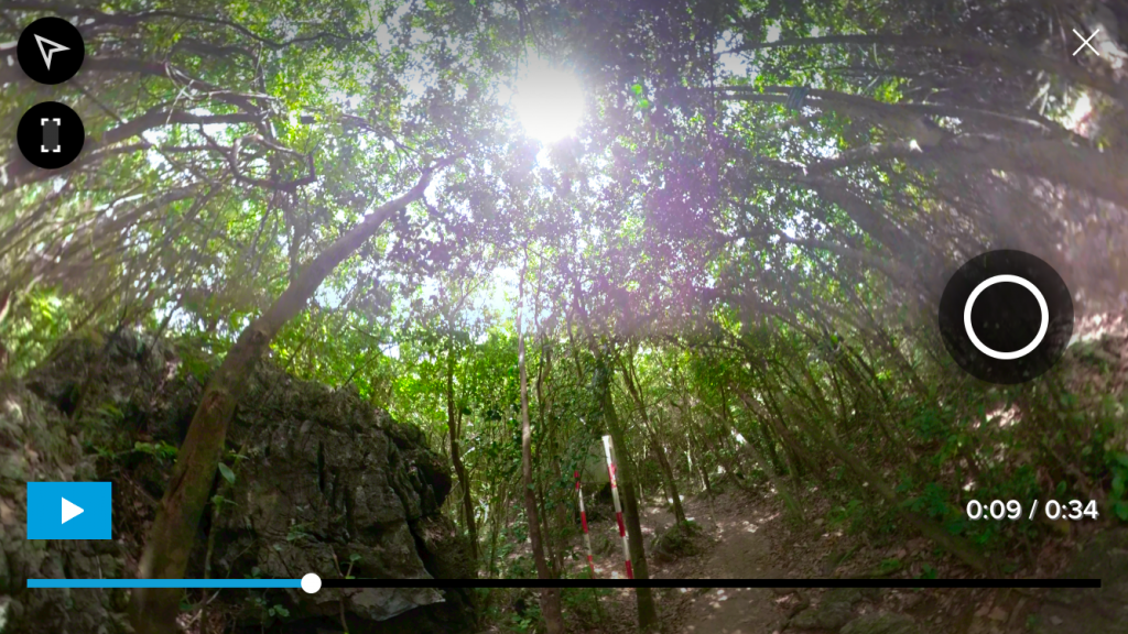 Here you can see unbalanced exposure across the two lenses of the GoPro Fusion, as the sun peeks through the canopy.